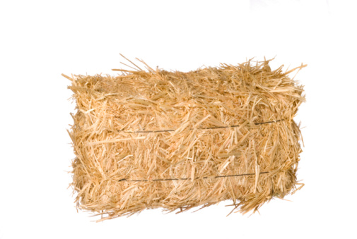 Using Hay For Horse Bedding
